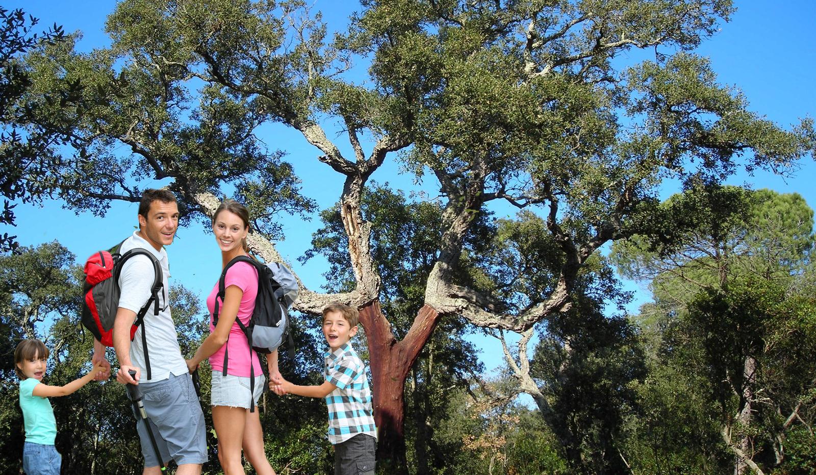 Randonnée - Camping Maureillas